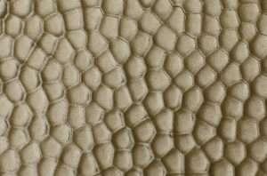 Bronze Hammered | Textured Finish (Discontinued)
