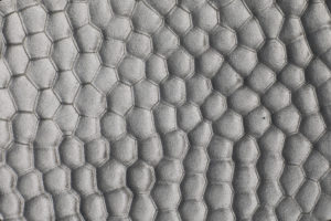 Stainless Steel Hammered* | Textured Finish